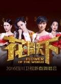 2016四川卫视跨年晚会