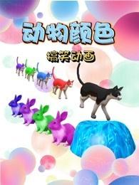 动物颜色搞笑动画