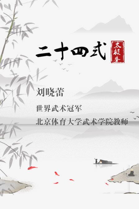 世界武术冠军刘晓蕾二十四式太极拳