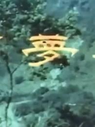 春梦了无痕(1968)剧情介绍
