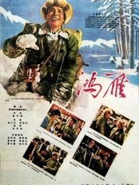 鸿雁(1960)