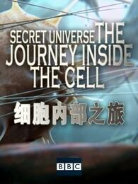 BBC:细胞内部之旅