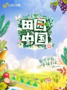 田园中国海报