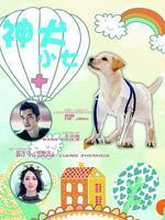 神犬小七DVD版