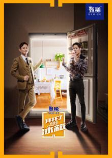 拜托了冰箱中国版第4季