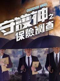 守护神之保险调查 粤语版TVB电视剧全集