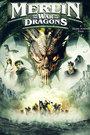《梅林和龙之战》在线观看
