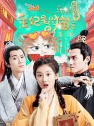 报告王爷,王妃是只猫第二季