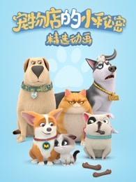 飞狗MOCO之宠物店的小秘密动画精选集