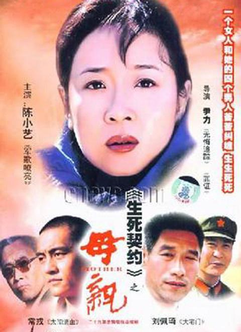 母亲(2004)