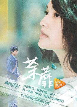 荼蘼(电视剧)
