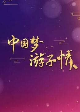 中国梦游子情