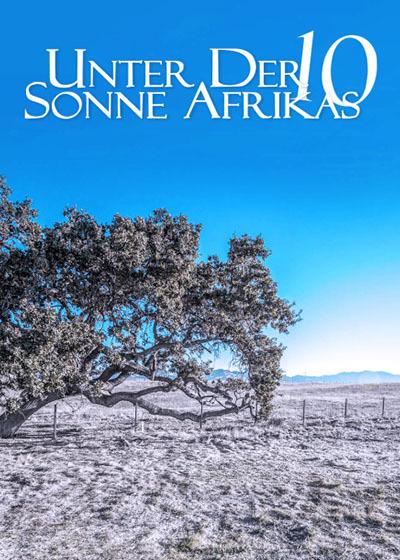 走进非洲10梦想树