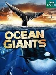 BBC:海洋巨兽