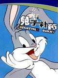 兔寶寶-兔子補藥
