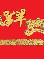 2015广东珠江春晚