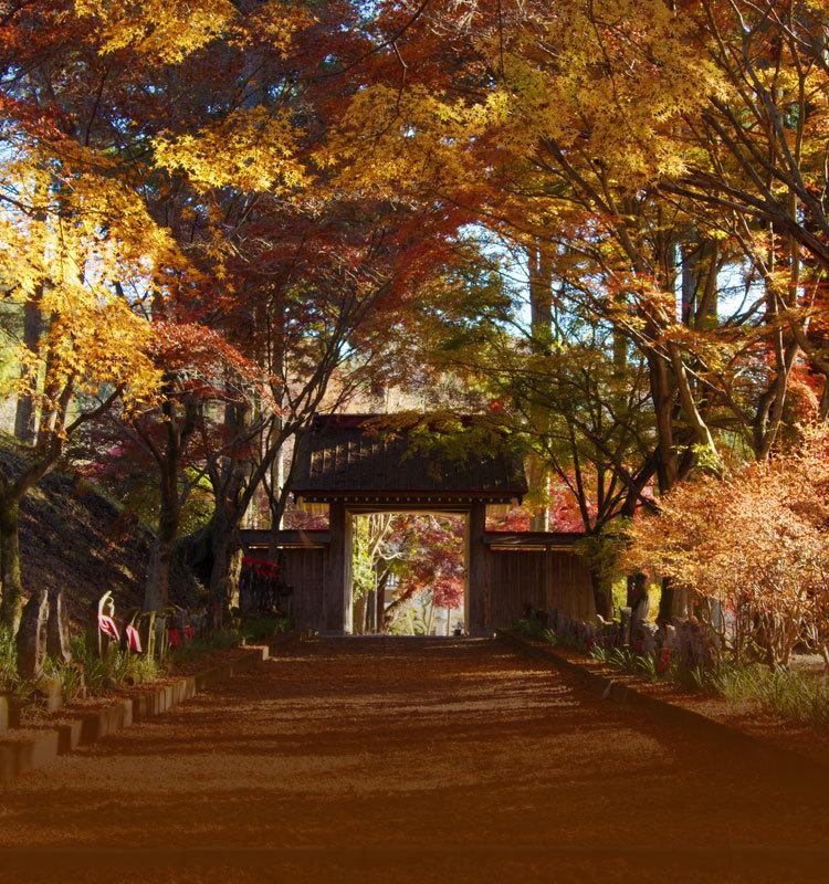 日本:四季韵味