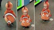 父母将宝宝扮成小丑鱼尼莫