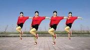 火爆舞蹈教学《爱情花蝴蝶》好听爆了,36步美爆了