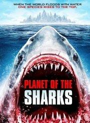 冰川时代1在线观看_侏罗纪狂鲨-更新更全更受欢迎的影视网站-在线观看