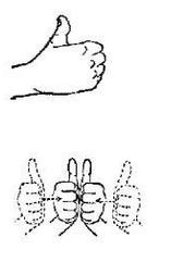 手语学习教程