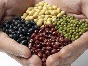 秋天怎么能不吃豆?三种豆子一起吃,健脾养胃,增强身体免疫力!