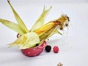 玉米须如何降血糖 看了就知道
