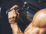 高级手臂肌肉力量训练计划