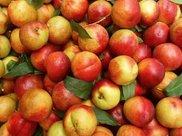 油桃的营养价值以及吃油桃的禁忌