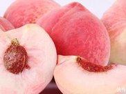 桃子吃过不少,除水蜜桃之外,你还知道几种?敬你是条汉子