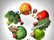2日水煮大白菜清肠减肥法有用吗 告诉你应该怎么做