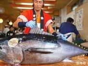 """两亿买回一条,因腮边肉鲜嫩,""""海中熊猫""""没能逃脱日本人的嘴巴"""