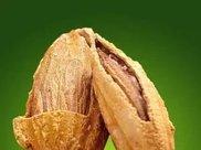 新疆人常吃的巴旦木原来这么厉害!这么多年都白吃了!