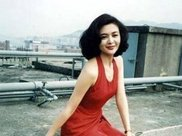 57岁关之琳生图让人感叹,卡其色衬衣率性洒脱,与甄子丹甜蜜合影
