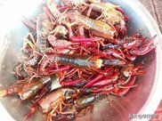 襄阳虾店吃虾,小龙虾来自潜江,一只一两