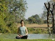 张钧甯晒瑜伽照:随意一练就是标准体式,油腻中年人就该这么瘦身