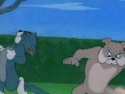 《猫和老鼠》表情包:汤姆拼命往前跑,却不想被斯派克踩住尾巴