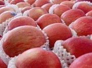 苹果减肥法 苹果瘦身汤的做法有哪些?