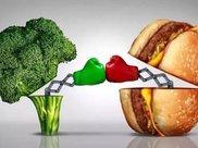 减肥到底应该是少吃肉还是少吃饭?