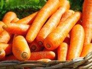 慢性胃炎吃什么食物好,十种有主要缓解慢性胃炎的食物
