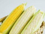 脂肪最怕的食材,玉米减肥法 让你狂瘦10斤还变年轻!