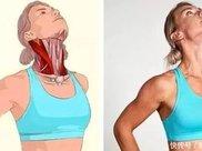 8个拉筋动作3D图解,让你告别肩周炎、颈椎病!减肥、上班族必备