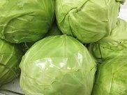 四种蔬菜最好少吃,当心有寄生虫,看有你经常吃的吗?