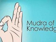 瑜伽常见的 8 个手印,你知道几个?