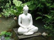 陈伟秘方:跏趺坐(双盘坐)教程,瑜伽打坐必修课