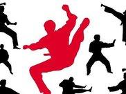 太极拳,健身气功,易筋经,八段锦,形意龙形剑法