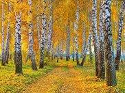 神农养生:秋冬季养生十个小常识