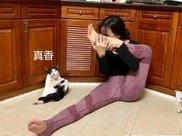 女主子在家练瑜伽,猫咪跟她一起练,网友:这私人教练是哪请的?