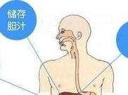 28岁小伙,上腹疼痛就医,被诊胆囊癌!医生提醒:这种习惯要不得