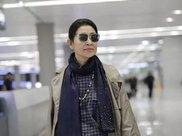 60岁倪萍现身机场减肥成功气质爆棚,50岁陈红这次真输了